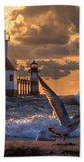 Seagull Takeoff - Tiscornia Beach  Beach Towel