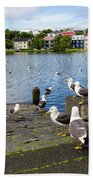 seagulls near a pond in the center of Reykjavik Beach Towel