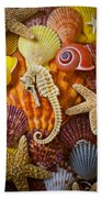 Seahorse And Assorted Sea Shells Beach Towel