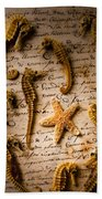Seahorses And Starfish On Old Letter Beach Towel by Garry Gay