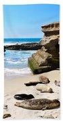 Seals Siesta On La Jolla Beach Beach Towel