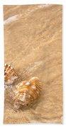 Seashell Turbulence Beach Towel