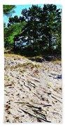 Seaside Path Beach Towel