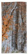 Seasons Overlapping Beach Towel