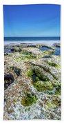 Seaweed And Salt. Beach Towel by Gary Gillette