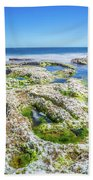 Seaweed And Salt Landscape. Beach Towel by Gary Gillette