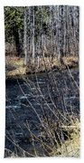 Secluded Brook Beach Towel