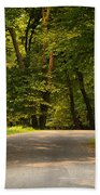 Secluded Forest Road Beach Towel