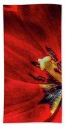 Secret Of The Red Tulip Beach Towel