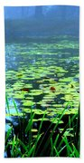 Secret Quiet Pond Beach Towel