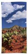 Sedona # 16 - Red Rocks Beach Towel