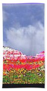 Sedona Snow Beach Towel