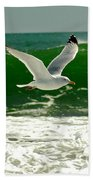 See Gull Beach Towel