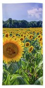 Seeds Of Hope Beach Towel
