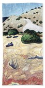 Seeing Beyond The Temporal Beach Towel