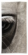 Stillness In The Eye Of A Horse Beach Towel