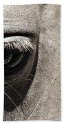 Stillness In The Eye Of A Horse Beach Towel