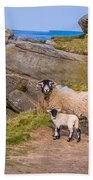 Seep And Lamb Beach Towel