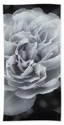 Selenium White Rose Beach Towel