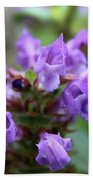 Selfheal Up Close Beach Towel