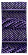 Sem Of Common Grackle Feather Beach Towel