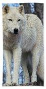 Sentry Wolf Beach Towel