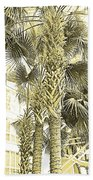 Sepia Toned Pen And Ink Palm Trees Beach Towel
