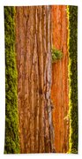 Sequoia Abstract Beach Towel