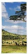 Serengeti Classic Beach Towel
