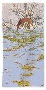 Serenity In The Spring Snow Beach Towel