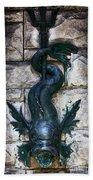 Serpent Fountain Beach Towel by Doug Sturgess