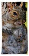 Sexy Squirrel Beach Towel