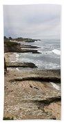 Seymour Marine Discovery Center Santa Cruz Beach Towel