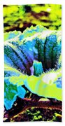 Sf Blossom Beach Towel