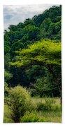 Shades Of Green Beach Sheet
