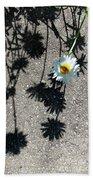 Shadow Daisy Beach Towel