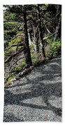 Shadow Path Beach Towel