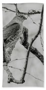 Sharp-shinned Hawk Black And White Beach Towel