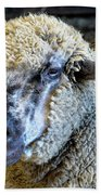 Sheep 1 Beach Towel