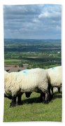 Sheep At Westbury Tor Beach Towel