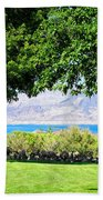 Sheep In The Shade Beach Towel