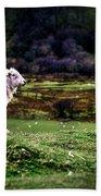 Sheep View Beach Towel