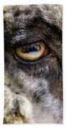 Sheep's Eye Beach Towel
