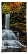 Sheldon Reynolds Falls Beach Towel