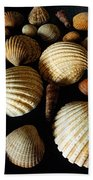 Shell Art - D Beach Towel