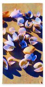 Shell Collection Beach Towel