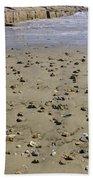Shells On The Beach Beach Towel