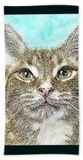 Shelter Cat Fantasy Art Beach Towel