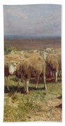 Shepherdess Beach Towel by Anton Mauve