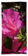 Shining Azalea Beach Towel